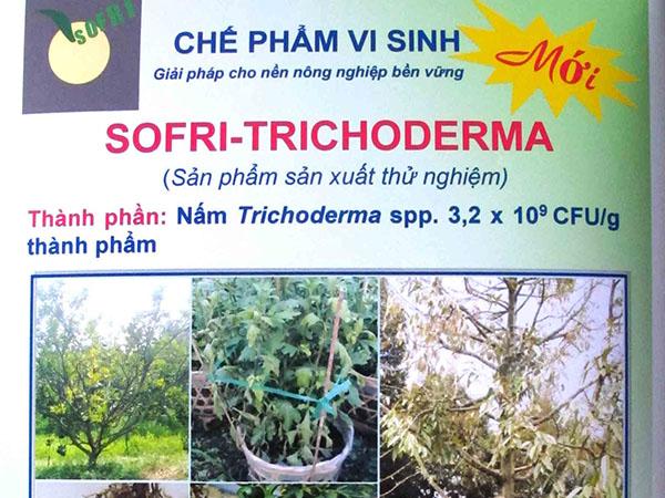 Chế phẩm vi sinh SOFRI - Trichoderma