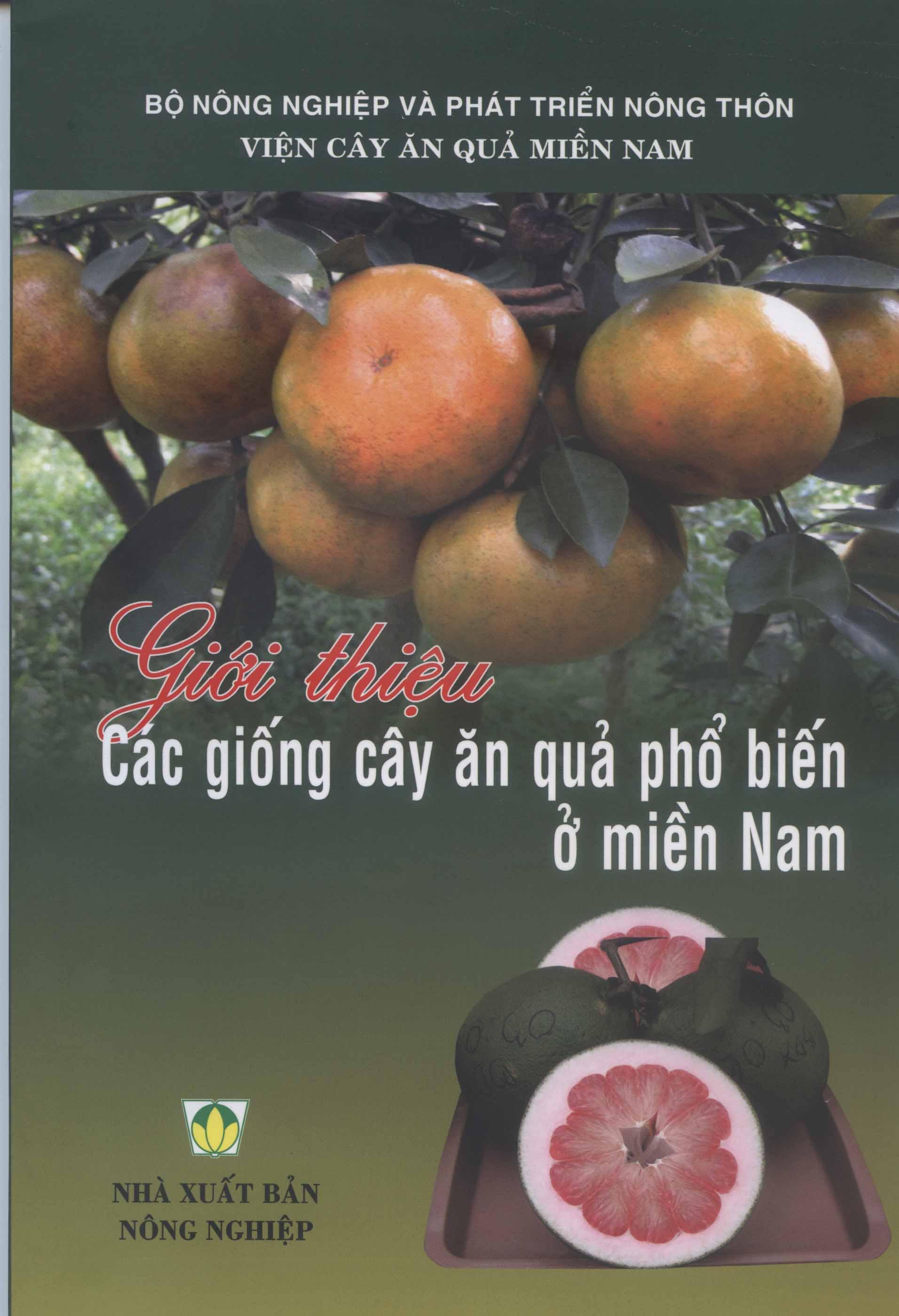 Giới thiệu Các cây giống cây ăn quả phổ biến ở miền Nam