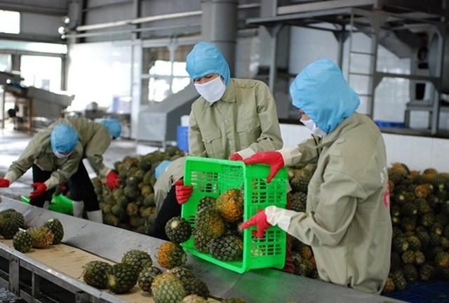 FDA - Thái Lan đã ban hành các quy định điều chỉnh việc giám sát dư lượng thuốc bảo vệ thực vật