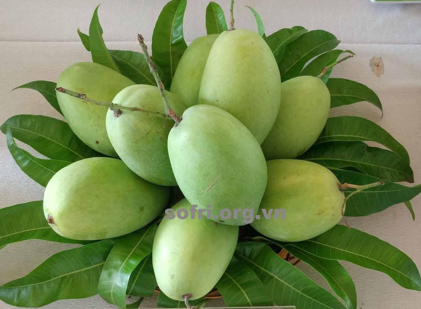 Cách chọn lựa một số trái cây ngon